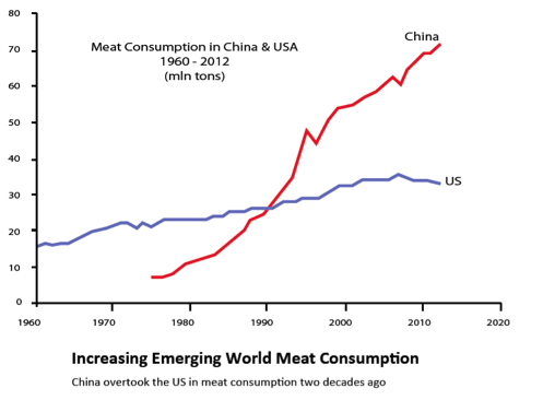 meat consumption in america